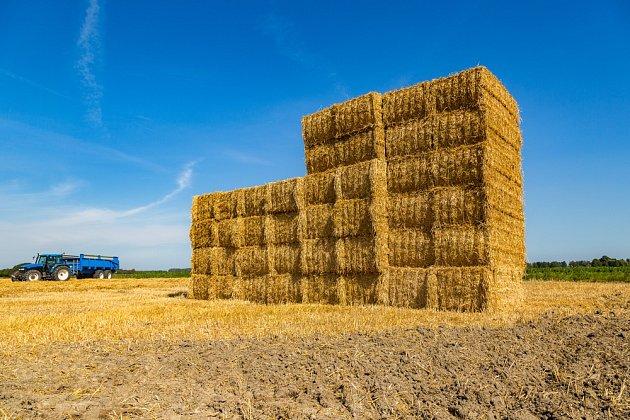 Sláma je ve skutečnosti vedlejším produktem obilného průmyslu