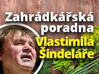 Poradna Vlastimila Šindeláře