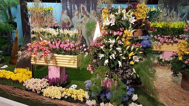 Pohled do expozice jarní etapy výstavy Flora Olomouc.