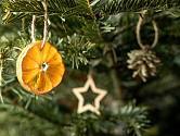 Vánoční stromek můžeme ozdobit třeba plátky sušených citrusů.