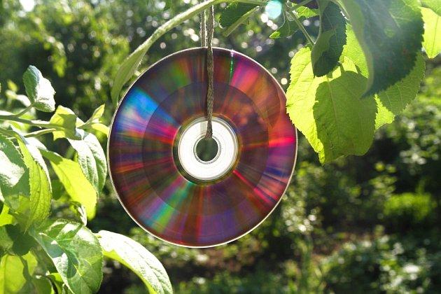 cd zahrada