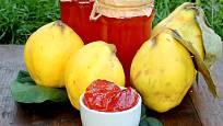 Z kdoulí se připravuje oblíbená marmeláda.