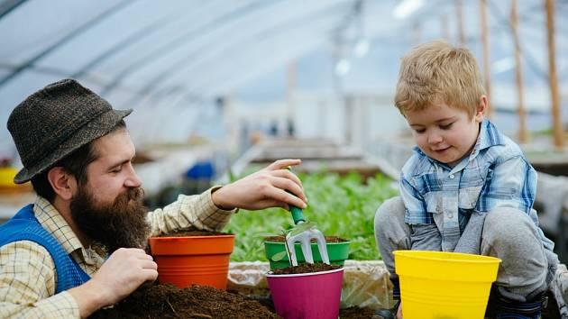 Hnojení je důležité nejen pro zahradu, ale i pro pokojové rostliny