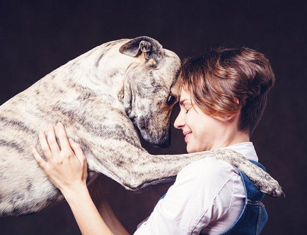 Svou lásku dávají psi najevo mnoha různými způsoby.