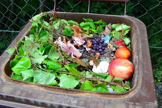Popelnice na bioodpad se objevují stále častěji
