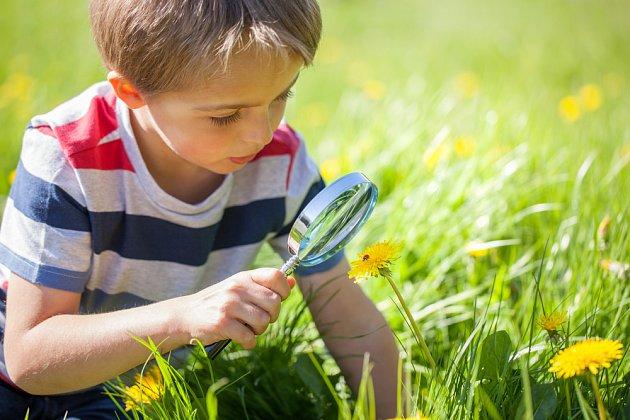 Den fascinace rostlinami je určen malým i velkým zájemcům