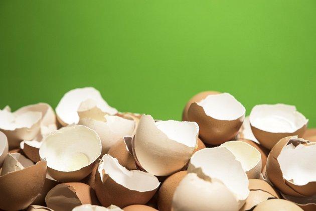 Vaječné skořápky jsou i krmením pro slepice