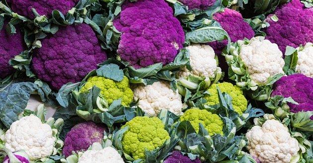 Květák i brokolici můžete pěstovat v atraktivně zbarvených odrůdách