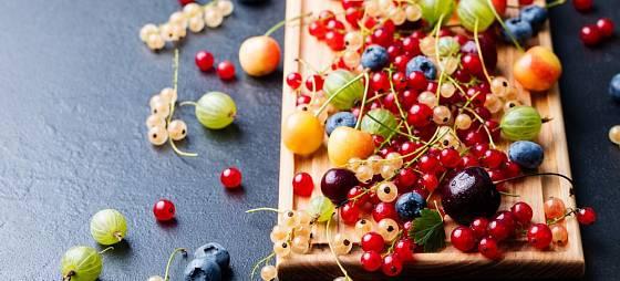Úroda ze zahrady, zdravý a lahodný poklad
