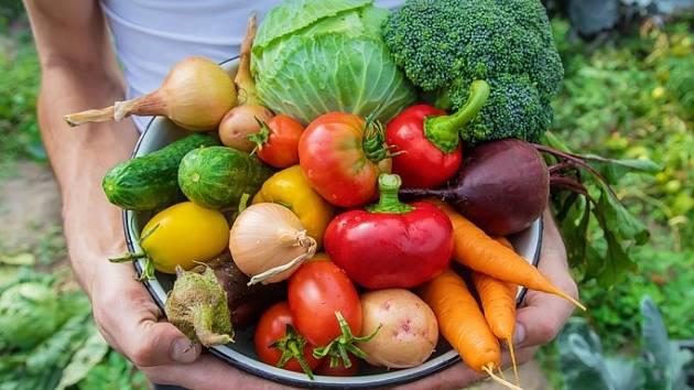 Není na škodu se přiučit, jakým plodinám se na zahradě vyhnout