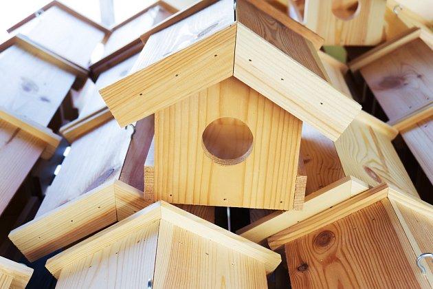 Vytvořte strakapoudům ptačí budku.