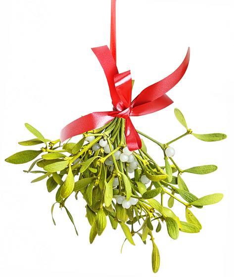 jmelí patří k oblíbeným vánočním symbolům