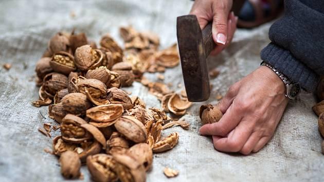 Rozbíjení ořechů kladivem.