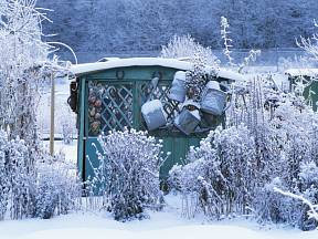 I zimní zahrada může být krásná