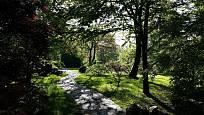 Japonská zahrada patří v pražské botanické zahradě k největším magnetům.