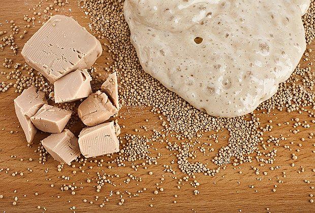 kynoucí těsto s droždím v kostce a suché granulované