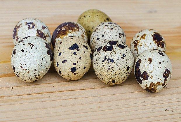 Křepelší vajíčka jsou maličká, ale nutričně hodnotná