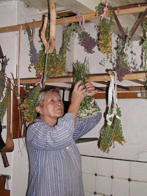 Vanda Vrlová zavěšuje bylinky k sušení.