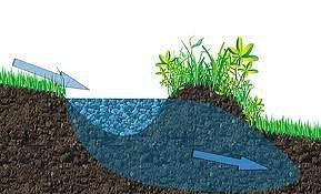 svejl vodu zadržuje a postupně uvolňuje, kam je třeba