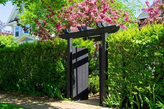Zeleň s nápadnou bránou.