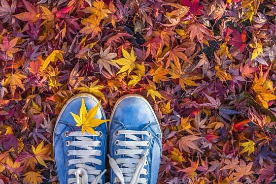 Procházka podzimní přírodou prospěje tělu i duši