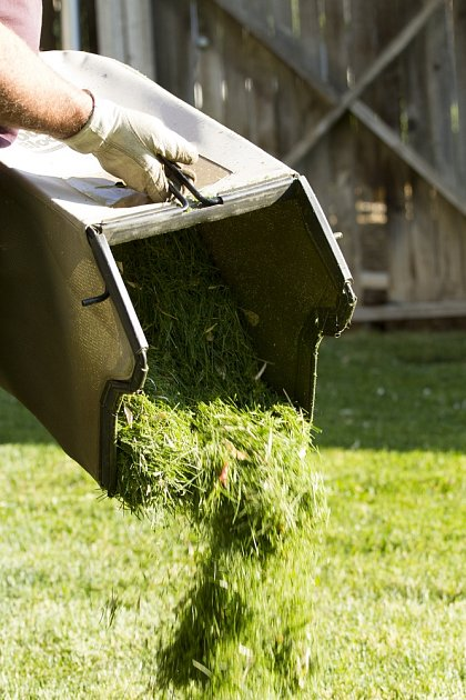 Posekanou trávu nevyhazujte