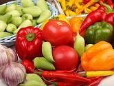 Vlastnoručně vypěstovaná rajčata a papriky chutnají nejlépe!