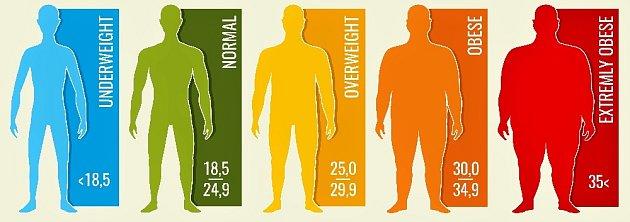 Index BMI - grafické znázornění