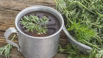 Nálev z pelyňku pomůže zbavit rostliny mšic