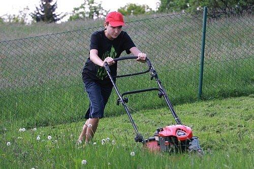 Ideální sečení trávníků je výška od 3 do 5 cm.