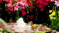 vodotrysk na zahradě