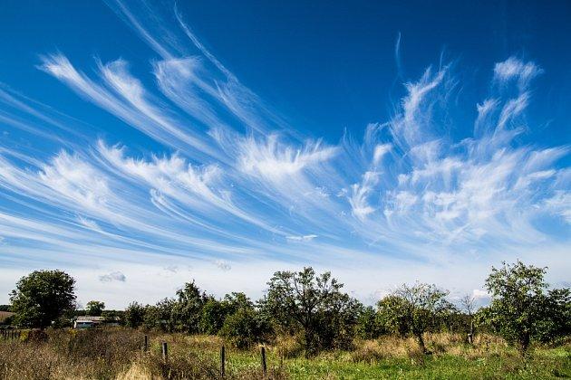 Oblaka cirrus