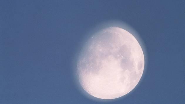 Lunární záře významným způsobem ovlivňuje celou přírodu.