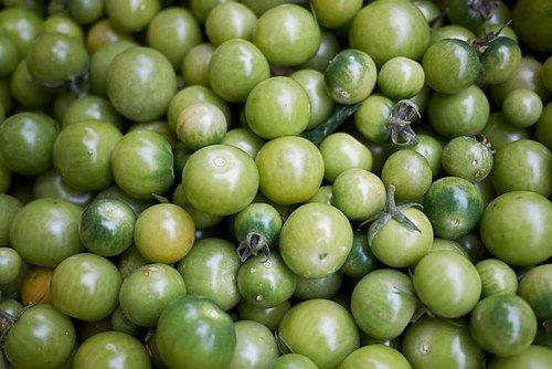 Plody, které jsou buď ještě zcela zelené, nebo se už lehce vybarvují, sklízejte se stopkou, déle vydrží!