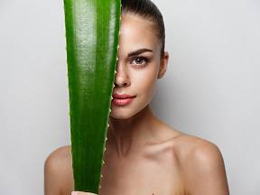 Aloe je úžastná léčivka. Víte, že ji můžete i jíst?