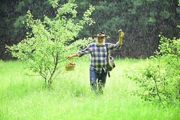 Déšť houbařům nevadí