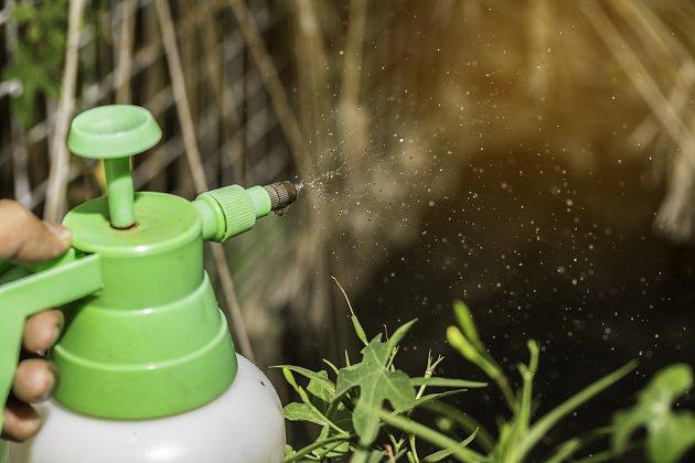 Mechanický postřikovač s pumpičkou ošetření rostlin usnadní - hodí se nejen na zahradu
