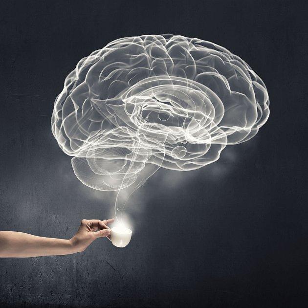 Mozek tekutiny nutně potřebuje. Ale pozor, není vhodné to přehánět. A do pitného režimu se nepočítá káva ani Cola.