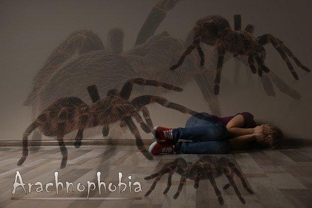 Strach z pavouků je velmi častý a zužuje velkou část populace, bez ohledu na pohlaví