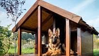 Některým psům více vyhovuje bouda s malou krytou předsíňkou.