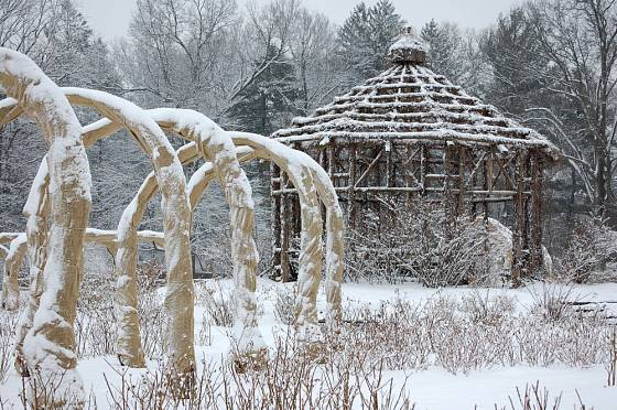 Růžové loubí v zimě, dokonalá ochrana pnoucích růží