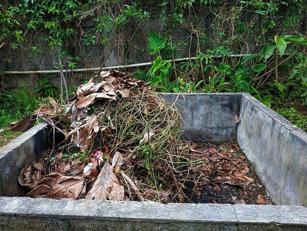 Obecně platí, že do kompostu patří nejrůznější rostlinné zbytky ze zahrady jako třeba čerstvě posekaná tráva, nepotřebné ostříhané větve živého plotu, spadané listí.
