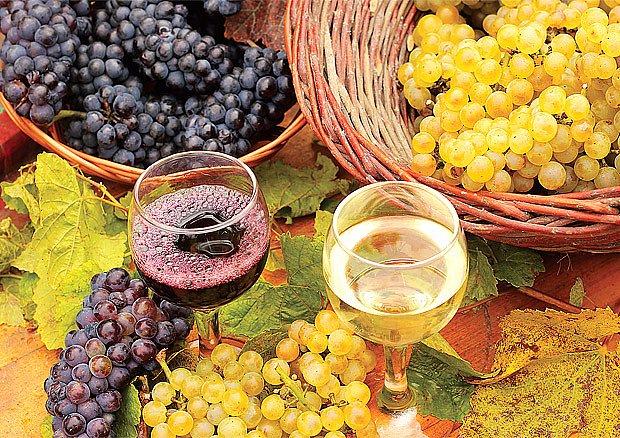 za dobrým vínem