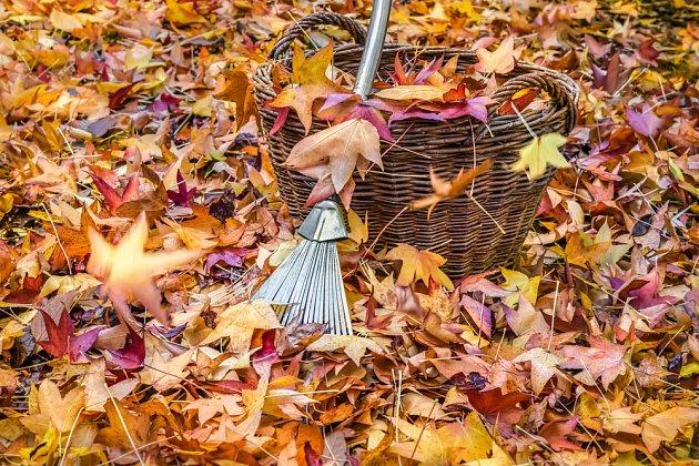 Listí je objemné, ale po rozložení svůj objem násobně zmenší