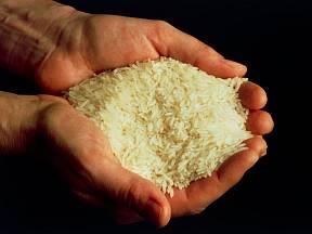 Rýže patří mezi velice oblíbené pokrmy.