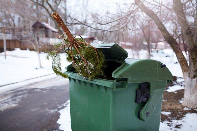Vánoční stromky vcelku ani rozřezané do kontejnerů nepatří.