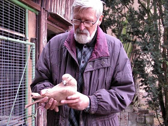 Chovatel holubů Václav Kuška