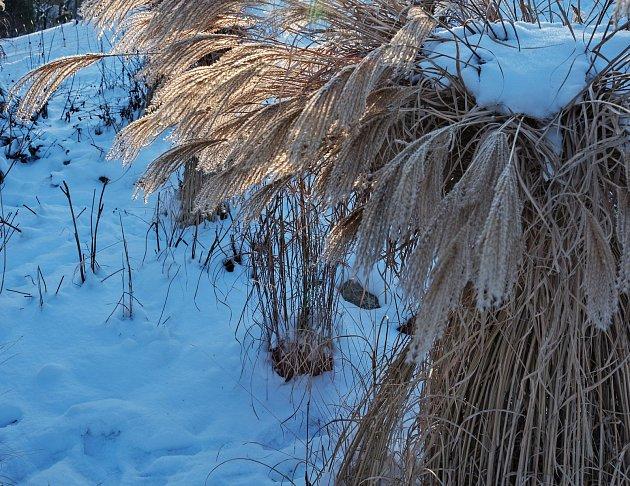 Samotné svázání pampové trávy chrání její citlivý střed, navrch můžete nalvéci rukávec