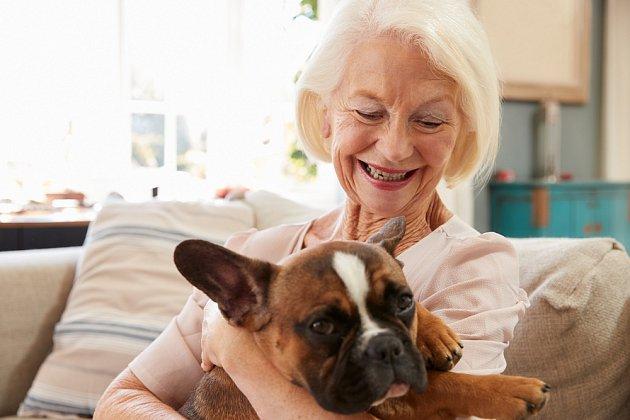 Každý pes s odpovídajícími charakterovými vlastnostmi se může stát canisterapeutem, nezáleží výhradně jen na volbě plemene.
