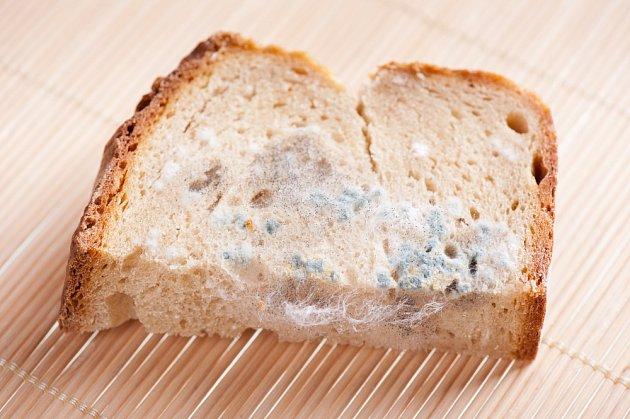 Plesnivý chléb je nutné vyhodit